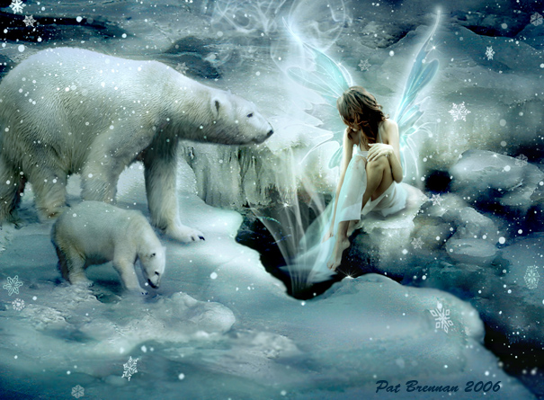 Polar magic