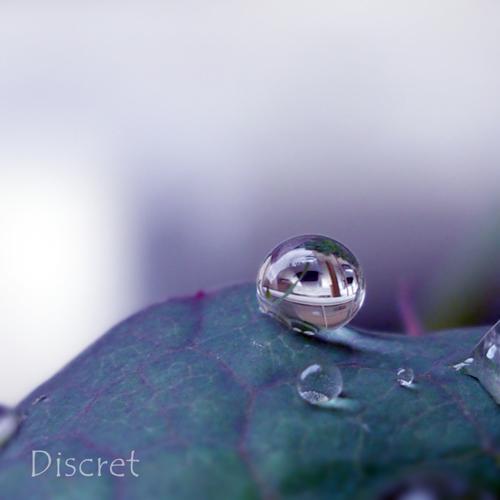 tear by discret