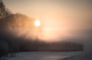 Cold Winter Morning 2 by sulevlange