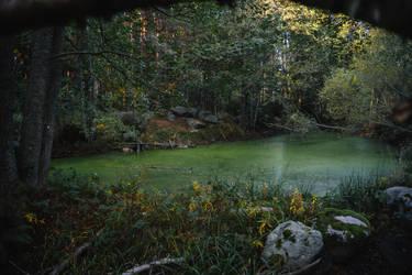 A hidden Pond