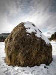 Hay on the snow by Hrymmskrymnir