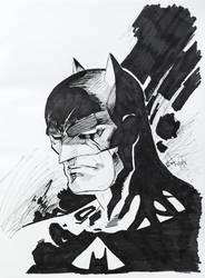 Batman 2 by Pound4Pound