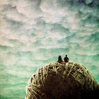 paper dreams... by betiti