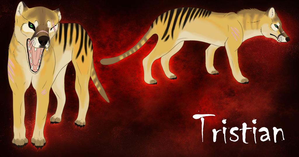 Tristian Ref by windwolf55x5