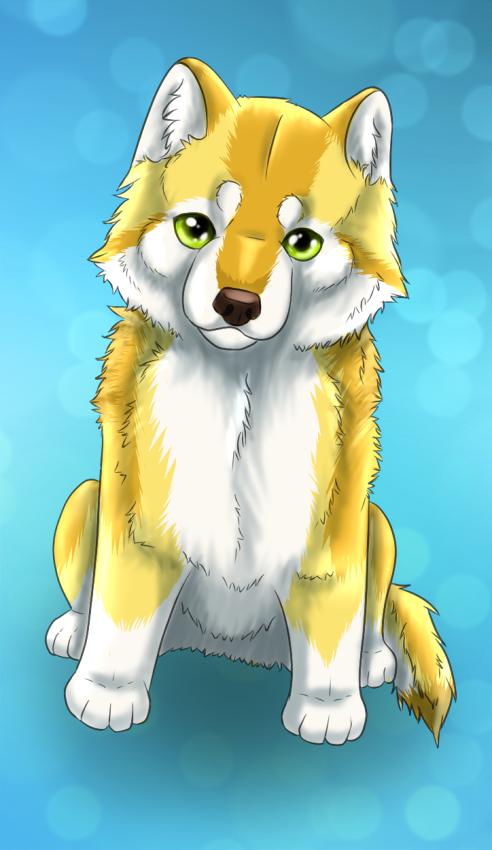 windwolf55x5's Profile Picture