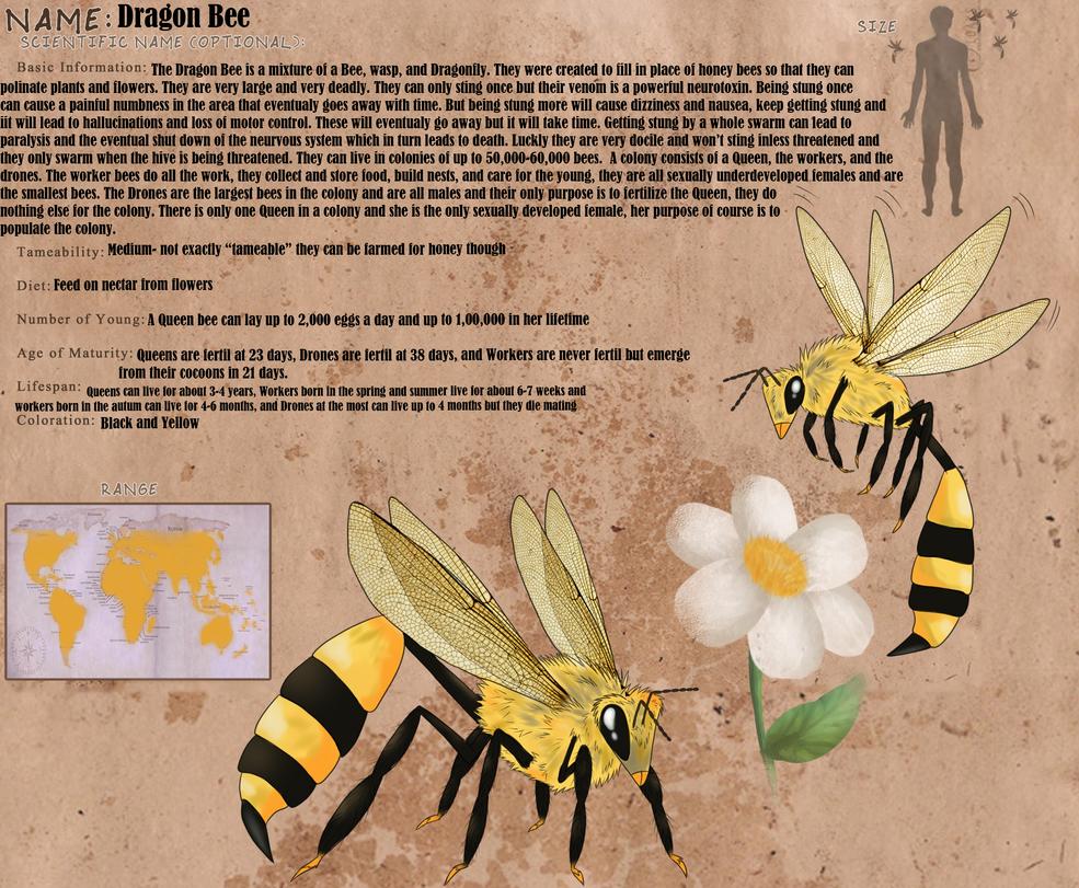 Dragon Bee by windwolf55x5