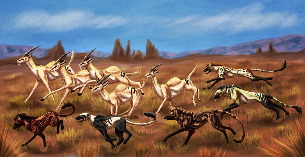 Running with Gazelles by windwolf55x5