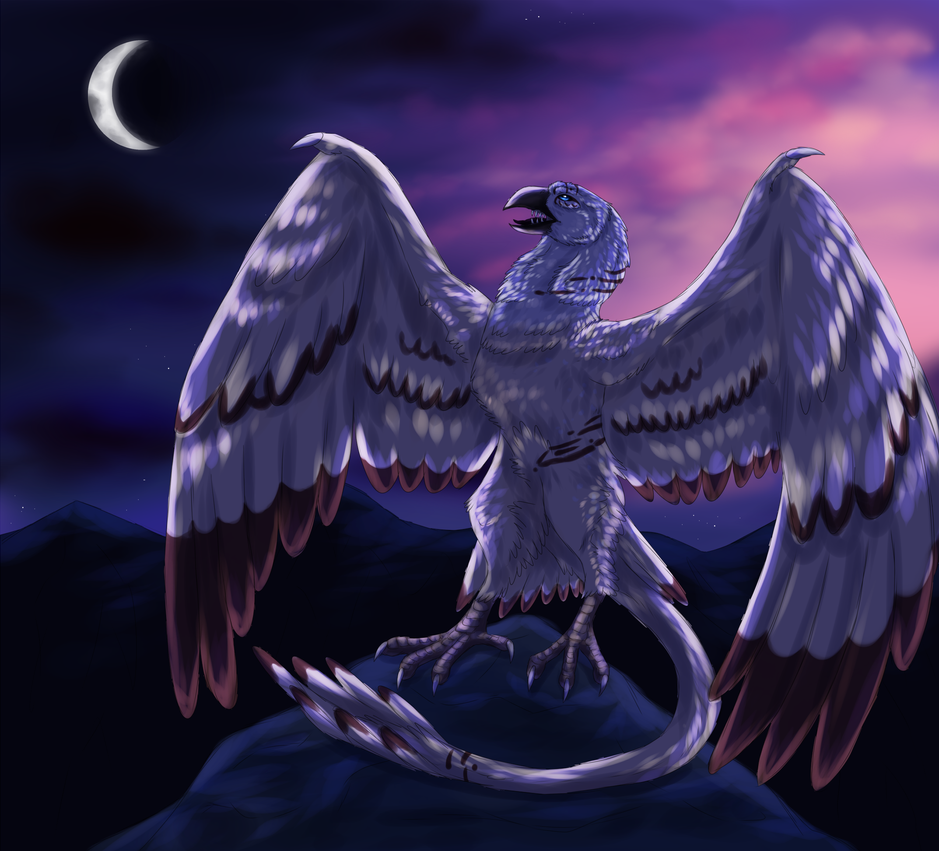 Call to the Night by windwolf55x5