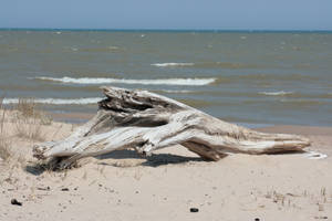 Beach 14 by sd-stock