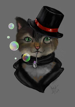 Sir Kitty-Cat