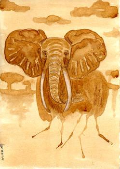Coffee Break: African Elephant
