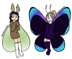 Lunar moth and butterfly adopts OPEN