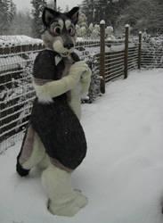 Cathlamet in snow