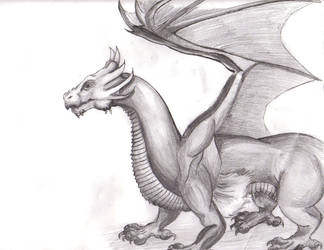 Dragon Sketch by wisecracker42