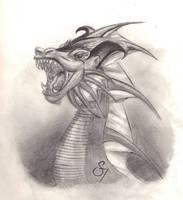 Roar by wisecracker42