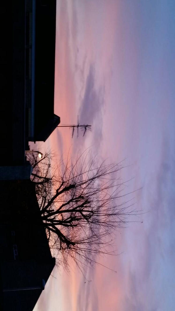 Purple Sunset  by Orangeak13
