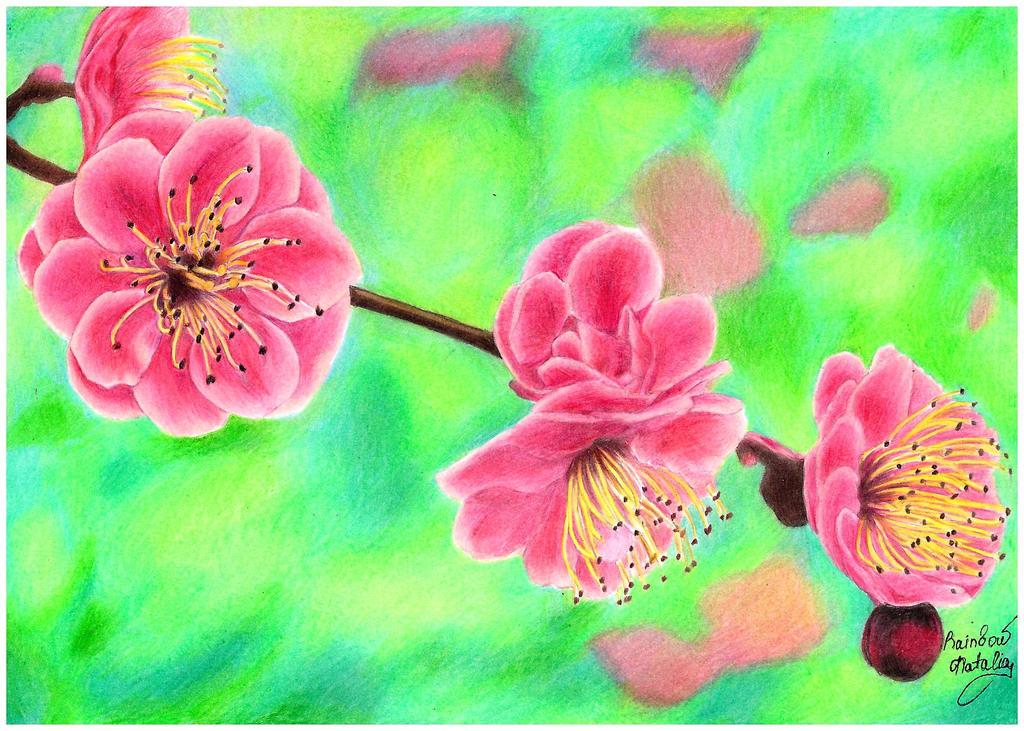 Flowers by RainbowNatalia
