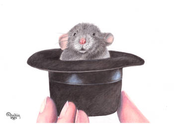 Mouse in a hat by RainbowNatalia