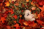 bed of leaves by islandtime