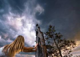 watching the skies by islandtime