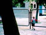 Fence Boy
