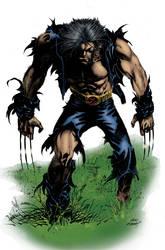 Kubert Wolverine by landau