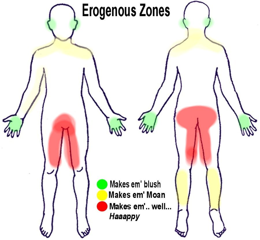 Womens erogenous spots