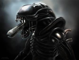 Xenomorph Warrior by Darkraimaster99