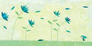The cornflowers