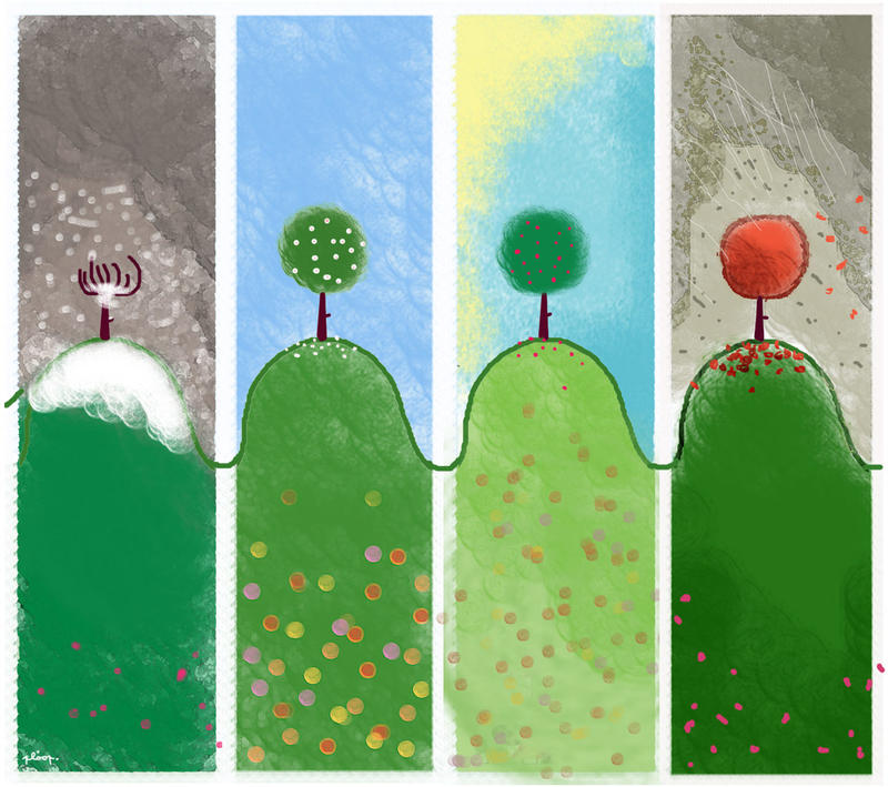 life of a tree by nicolas-gouny-art