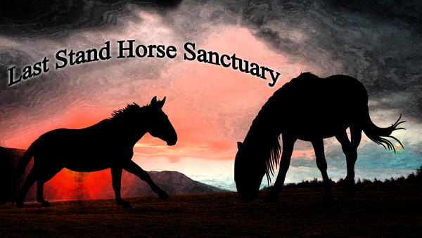 Last Stand Horse Sanctuary by farfinmosker
