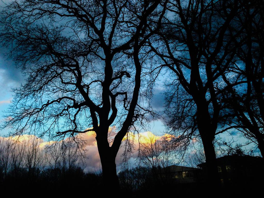 Sunset Again by HexeMistelzweig
