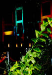Night_colors