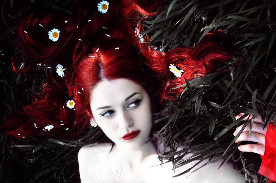 Red dream by EmraSalih