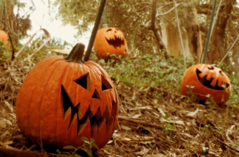 Halloween Fruit by Mustafa-H