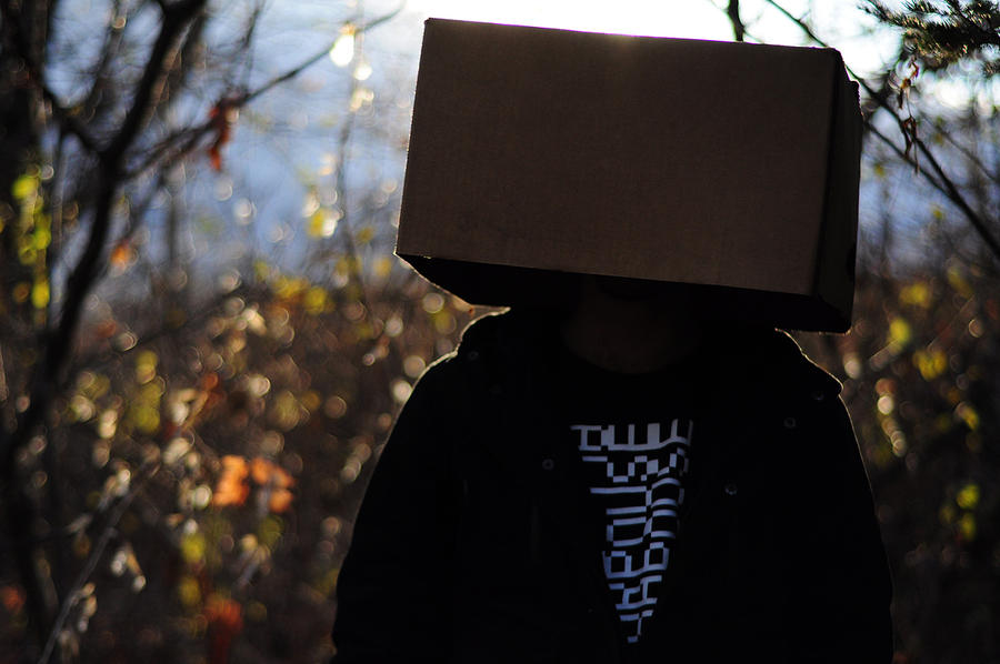 box head II by Noise-Less
