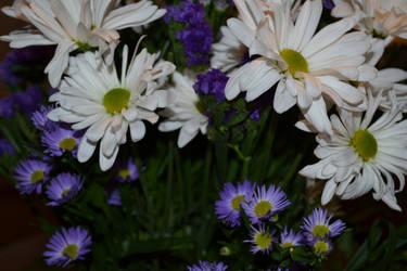 Flowers for Nana by xappletinix