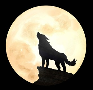 Moon-Howler-UK's Profile Picture