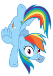 Rainbow Dash forgot how to pony