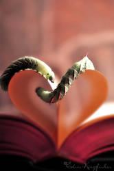 A Bookworm's Romance by Edris-Kingfisher
