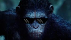 DatDamnDirtyApe's Profile Picture