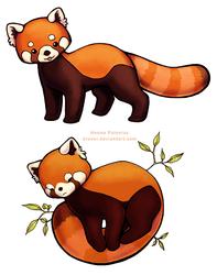 Red Pandas by Erunei