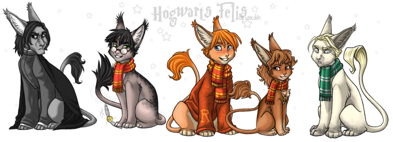 Hogwarts Felis XDD by leelakin