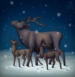 .: Christmas Night :.