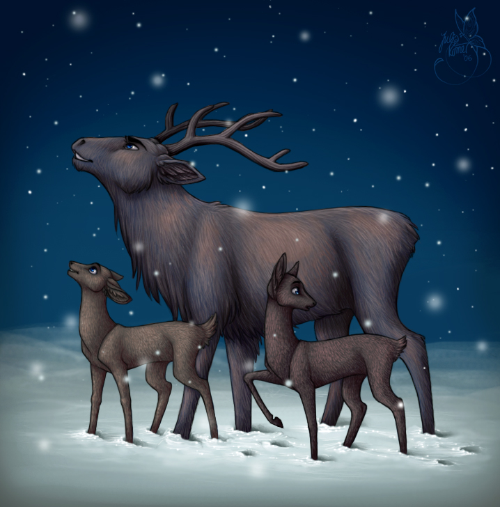 .: Christmas Night :. by leelakin