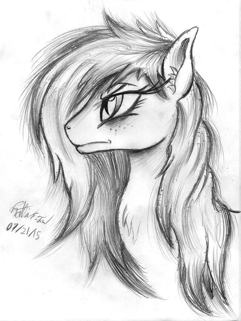 Rain Chaser - Zaphy1415926 OC Portrait Sketch by AncientOwl