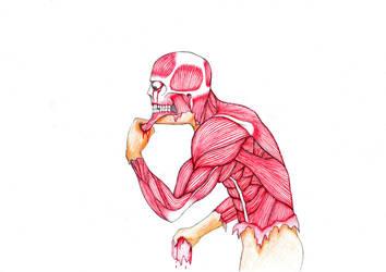 Anatomic Flaying by DayWeAntArt