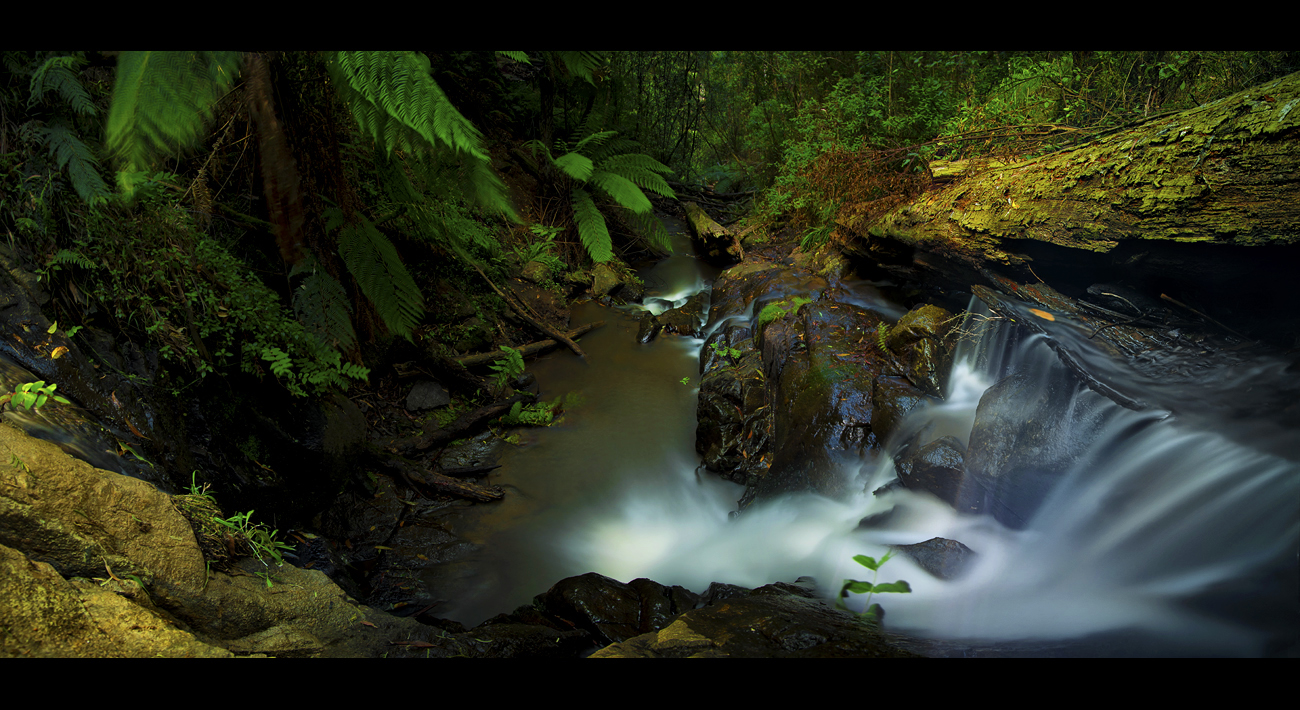 Tree Trunk Falls by WiDoWm4k3r