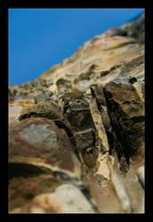 Pokey Rockes Of Ye Liu by WiDoWm4k3r