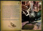 Adventurer's book